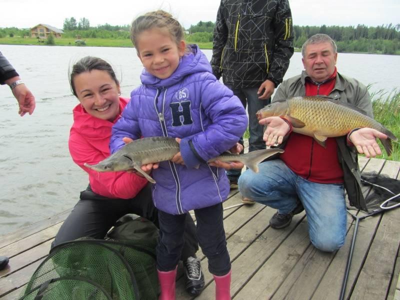 Уловистая рыбалка на львовских прудах в московской области