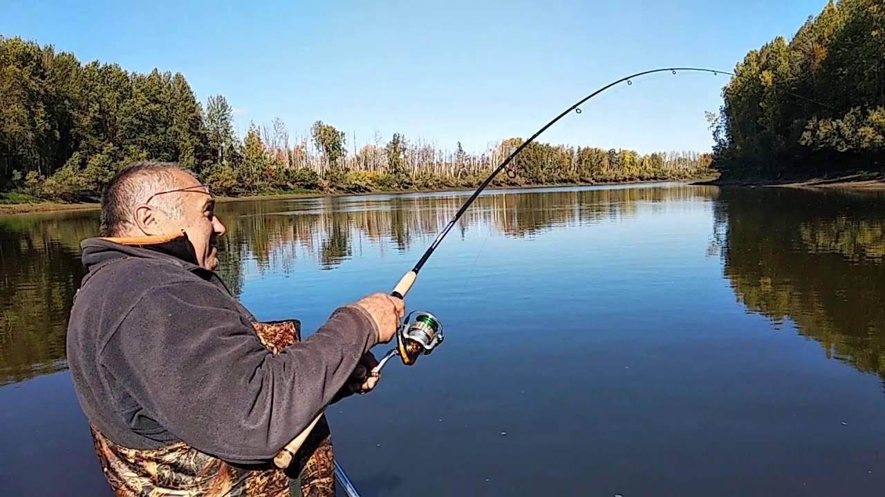 Правила рыбалки в свердловской области (2020 г.)