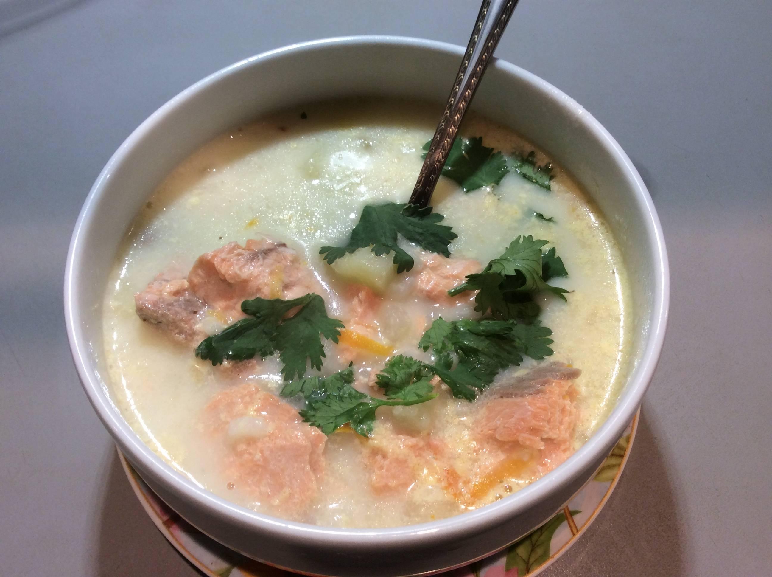 Сливочный суп с семгой - рецепты норвежского блюда из головы, брюшек красной рыбы, с креветками и помидорами