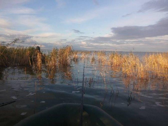 Отец с ребенком заблудились на озере в челябинской области во время рыбалки