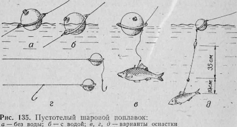 Ловля судака на живца: выбор живца, снасти и как пользоваться