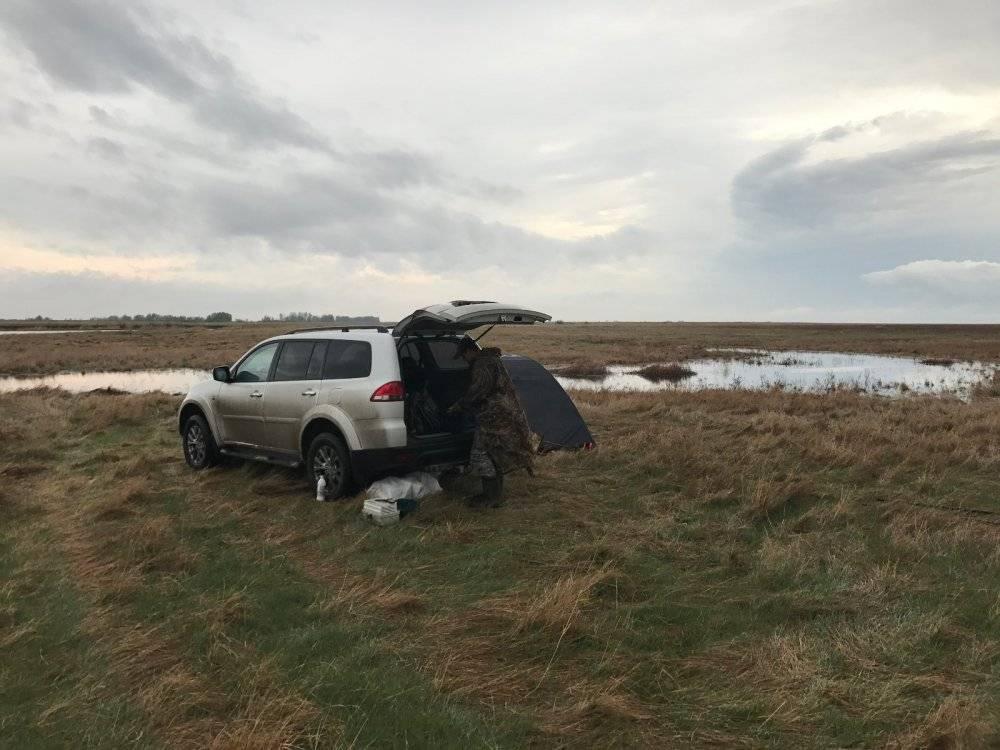 Ни хвоста, ни чешуи: где отдохнуть и порыбачить вблизи новосибирска - сиб.фм