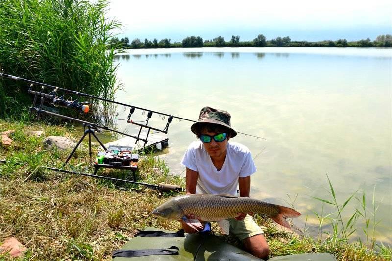 Запрет на рыбалку 2019 в казахстане: правила и места