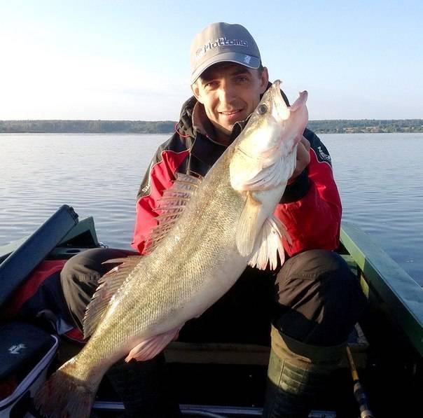 Яузское водохранилище: описание водоема и его месторасположение, особенности рыбалки, отзывы рыбаков | berlogakarelia.ru