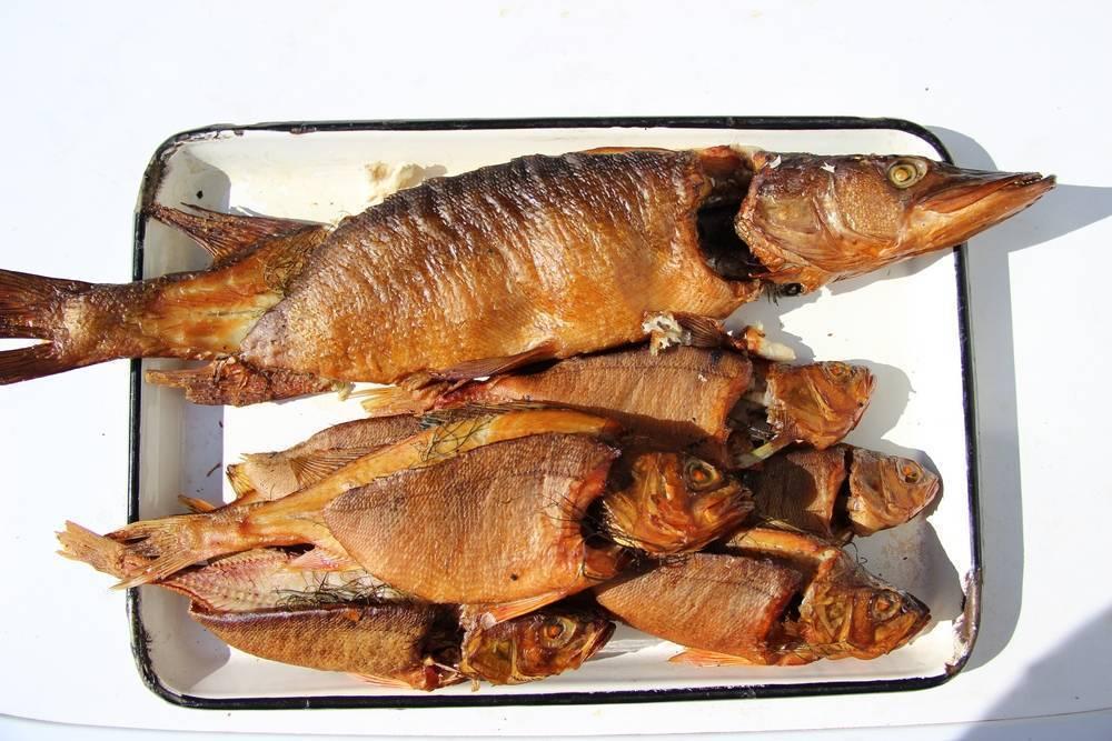 Копчение лосося: подготовка и маринад, рецепты холодного и горячего методов