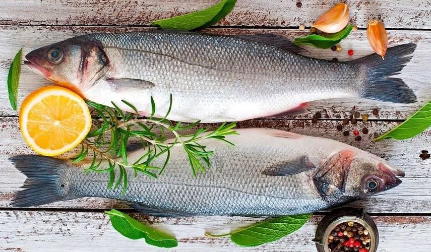 Морская и речная рыба, польза и вред
