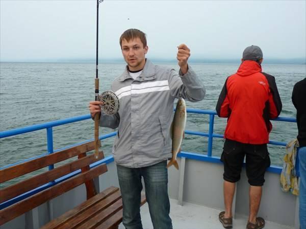 Рыба омуль: образ жизни и способы ловли