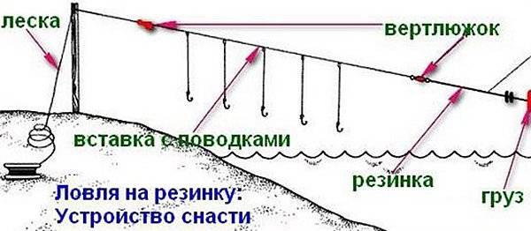 Как правильно ловить чехонь на резинку, бомбарду и фидер - видео инструкции