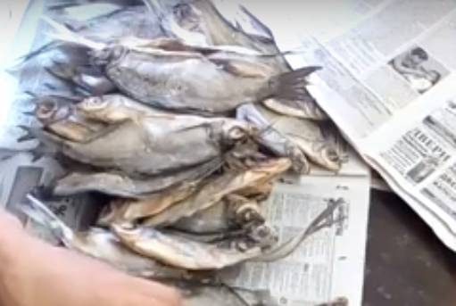 Как хранить вяленую и сушеную рыбу в домашних условиях: чтобы не пересохла, в холодильнике, на длительный срок, срок годности