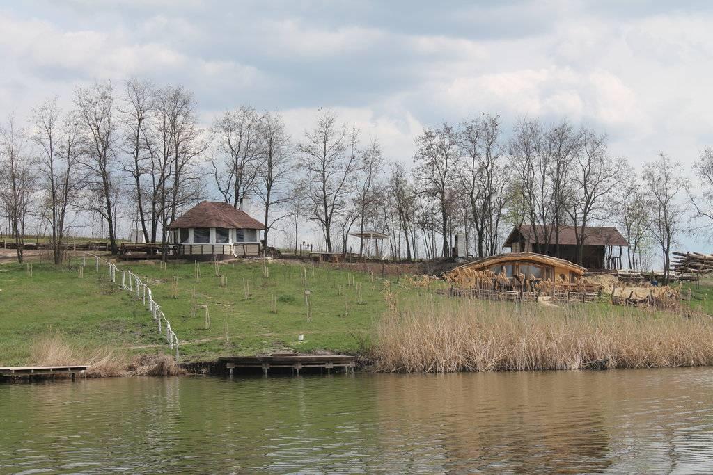 Рыбалка в белгороде и области: на реке оскол и северский донец