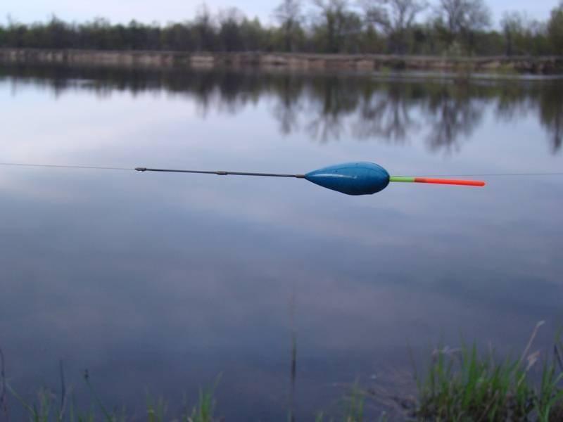 Болонская удочка на рыбалке и ее оснастка: поплавок, катушка, удилище и как начинать ловлю