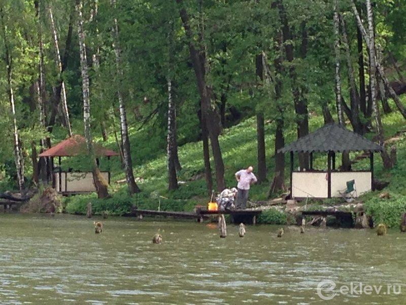 Лагуна мисайлово: платная рыбалка, официальный сайт пруда