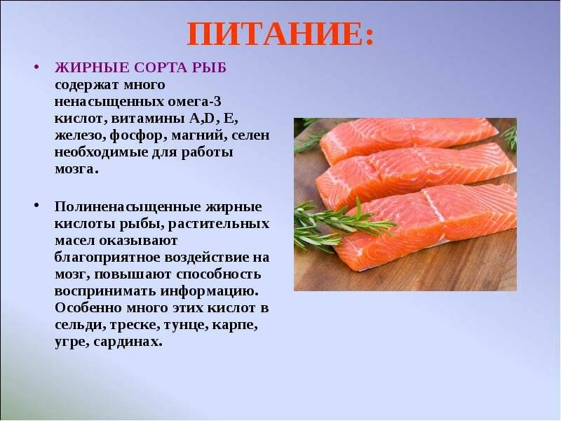 Навага жареная калорийность на 100 грамм. пищевая ценность и полезные свойства наваги. с чем сочетается навага - заболевания-мед