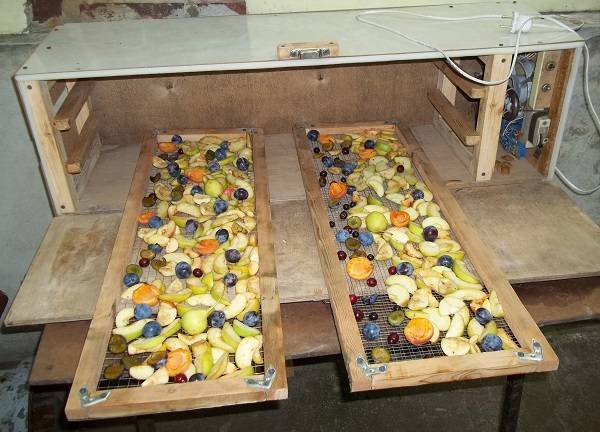 Сушилка для овощей и фруктов своими руками: фото, чертежи, схемы, видео сушилка для овощей и фруктов своими руками: фото, чертежи, схемы, видео