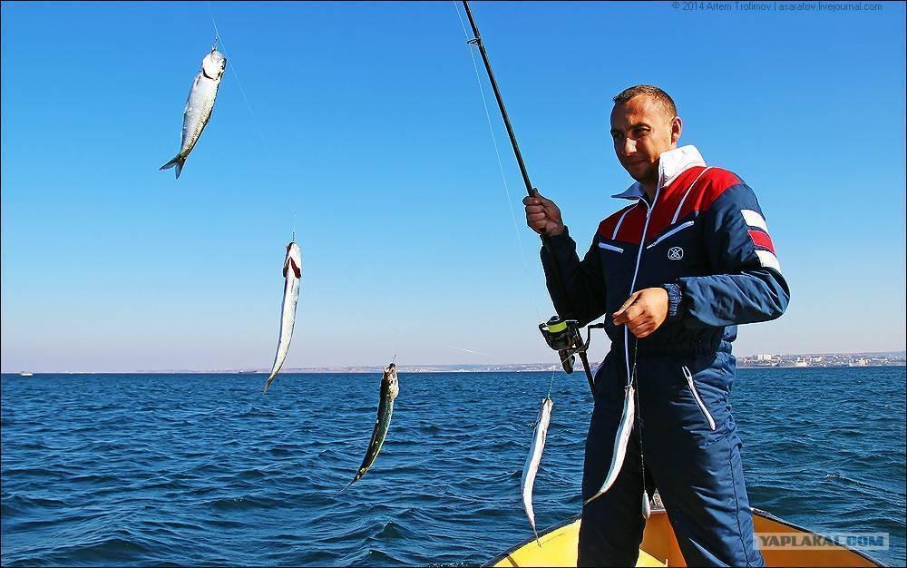 Рыбалка на азовском море с берега