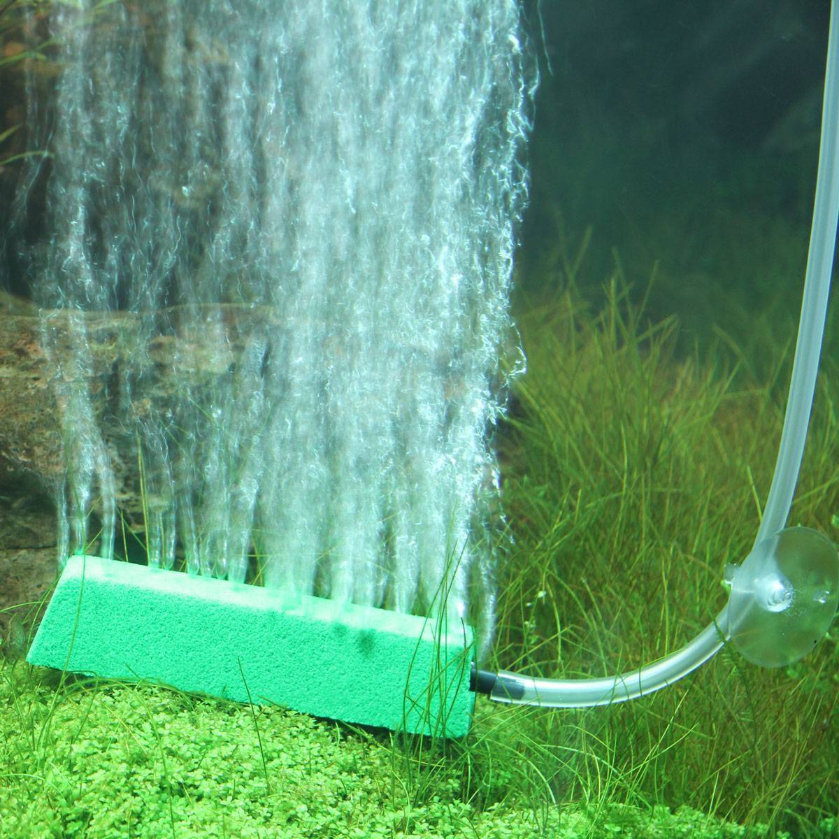 Аэрация аквариума: нужна ли в аквариуме, способы подачи