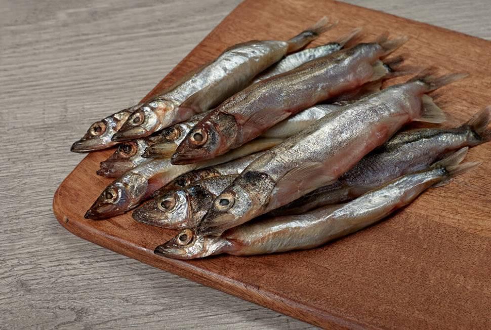 Рыба зубатка: описание вида, где водится, как готовить, польза и вред, цена