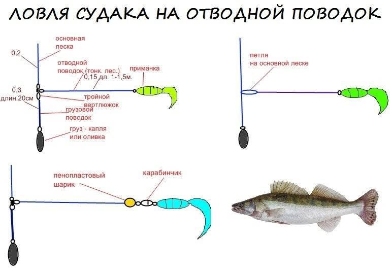 Ловля окуня на микроджиг: особенности, подготовка снастей - na-rybalke.ru