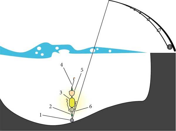 Ловля толстолобика: как ловить на удочку, на что лучше клюет, выбор приманок