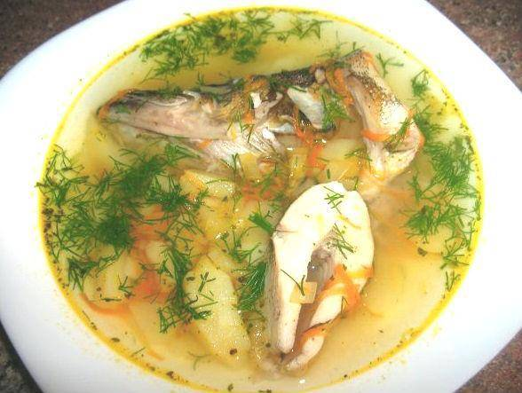 Суп из щуки - рецепты с фото пошагово