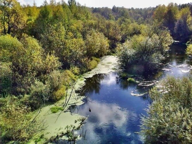 Набережная петрозаводска (онежского озера) фото, адрес, как добраться