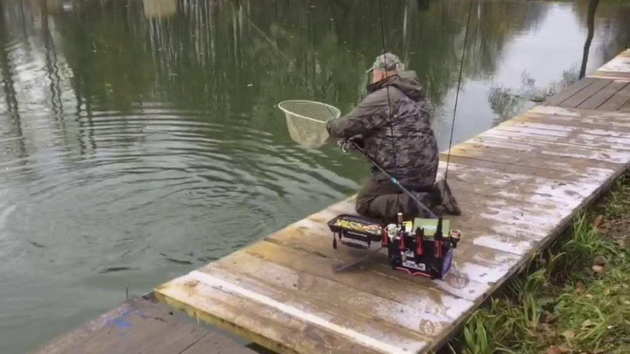 ✅ ольгово рыбалка кольская форель - danafish.ru
