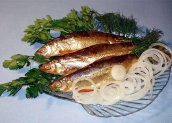 Рыба ряпушка: фото, где водится, виды (европейская и сибирская), особенности ловли