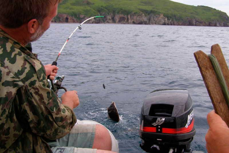 ✅ снасть для ловли камбалы с берега - рыбзон.рф
