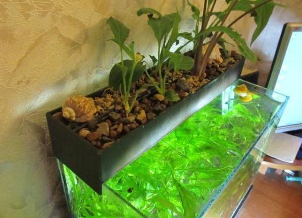 Биофильтр для аквариума своими руками