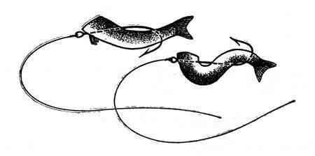 Ловля судака, берша, налима, щуки, на балду. снасти, наживка, техника ловли. краткая заметка