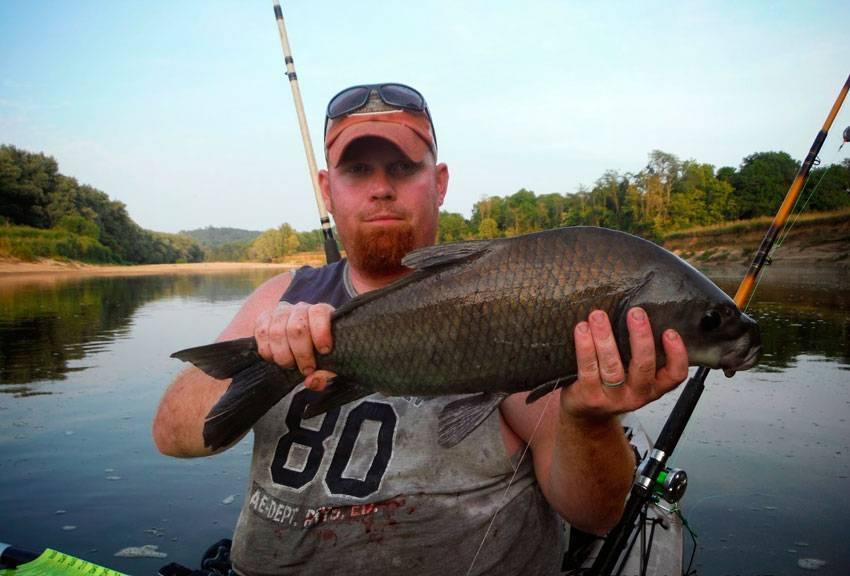 Ловля групера: фото, описание и места ловли рыбы