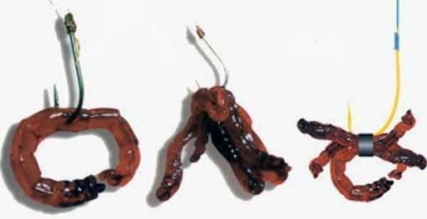 Как правильно насаживать мотыля на крючок – несколько способов [2019]