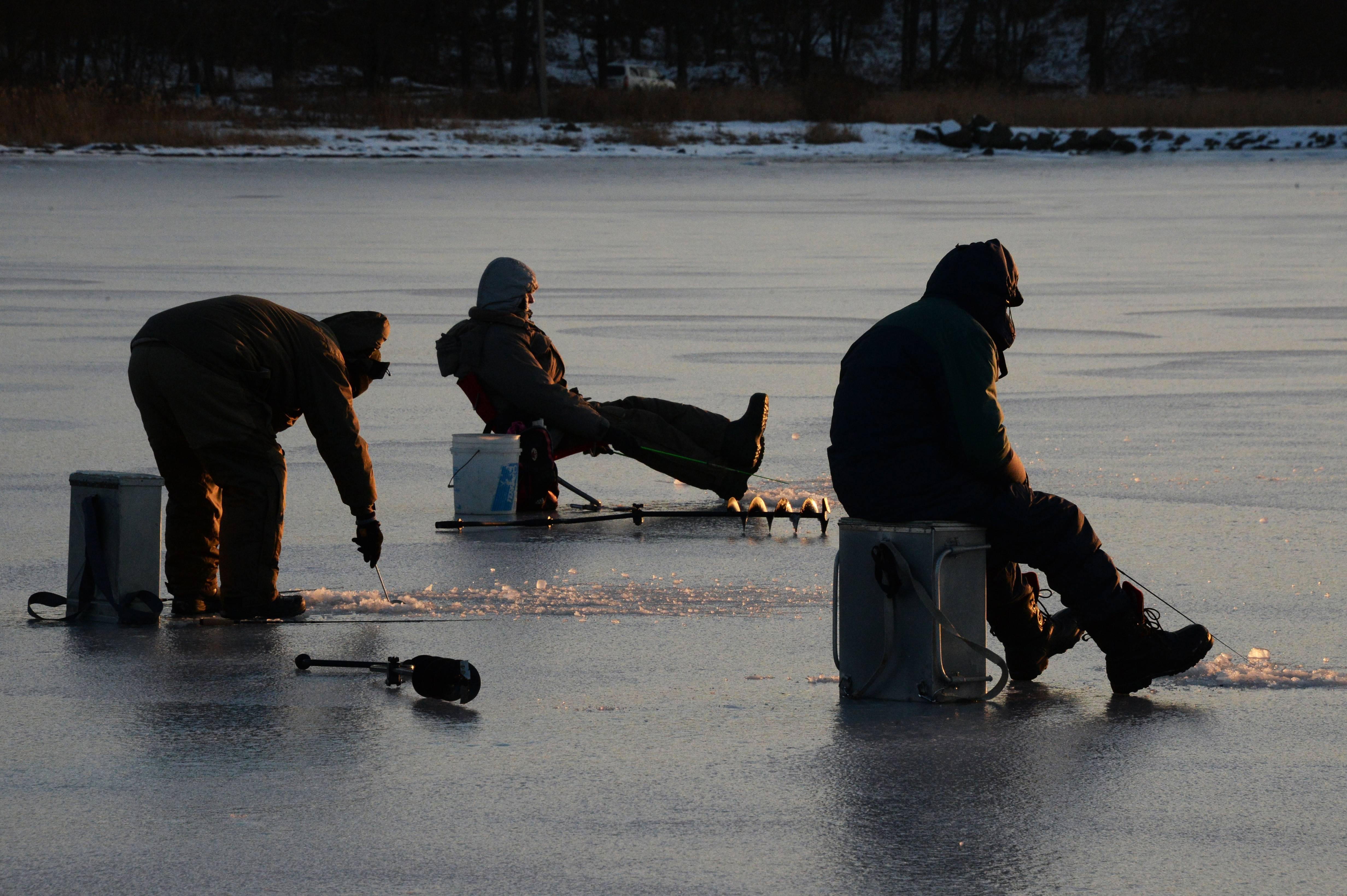 Увлекательная ловля рыбы на реке бердь |