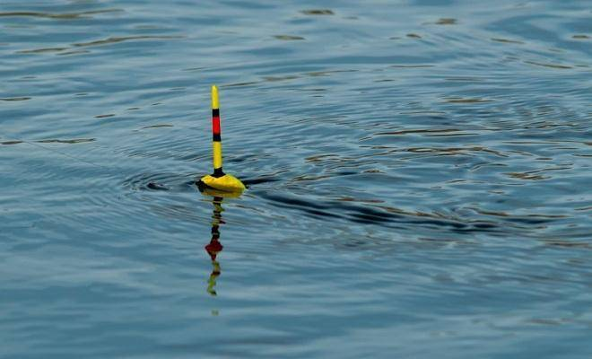 Моя практика: поплавок - спортивное рыболовство