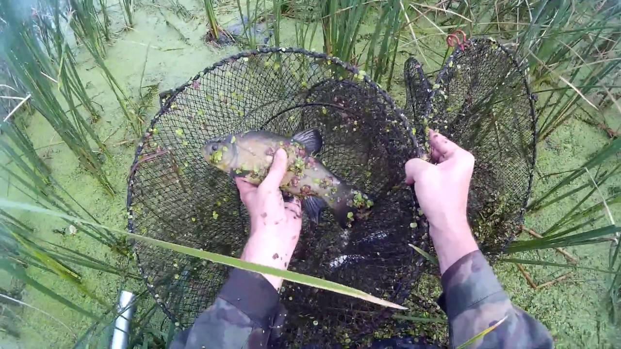 Верша рыболовная своими руками