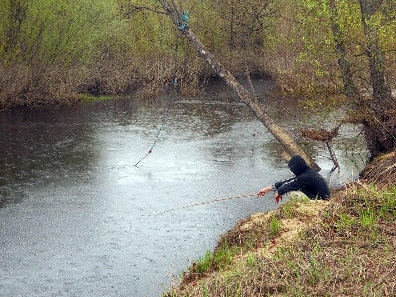 Клёв после дождя: почему усиливается? рыба и осадки.