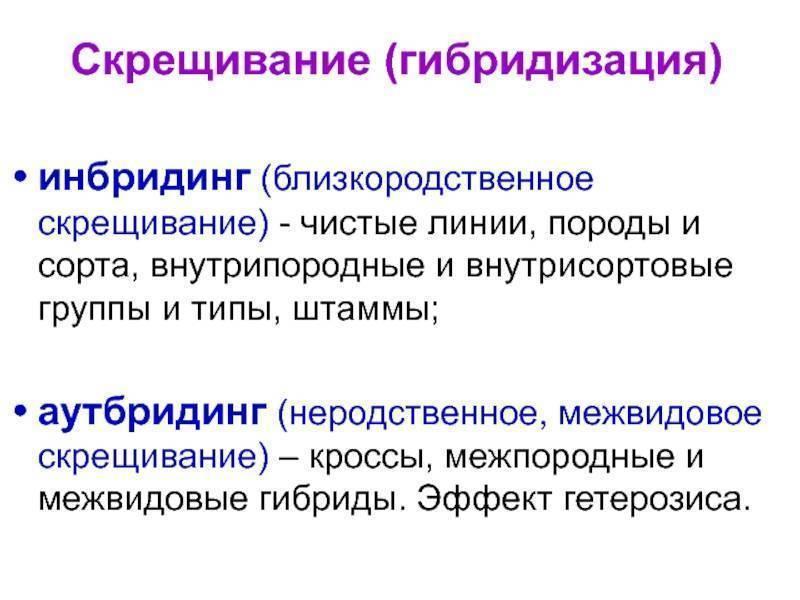 Рыбалка в ростове и ростовской области