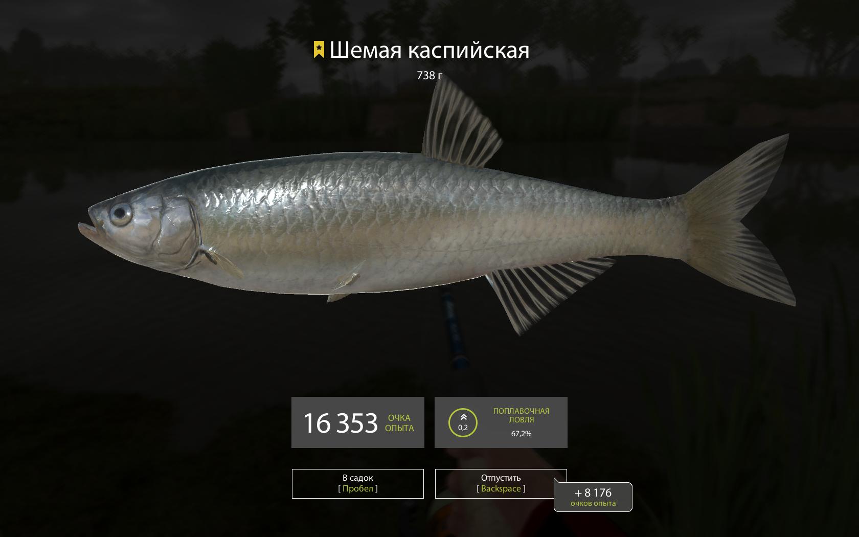 Шемая рыба