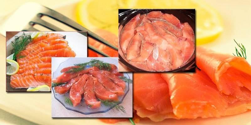 Засолка лосося рецепт классический