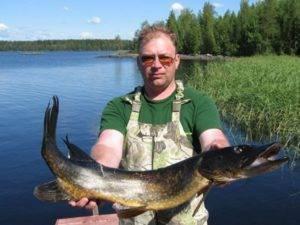 Рыбалка в белогорье: красота водоёмов белгородской области