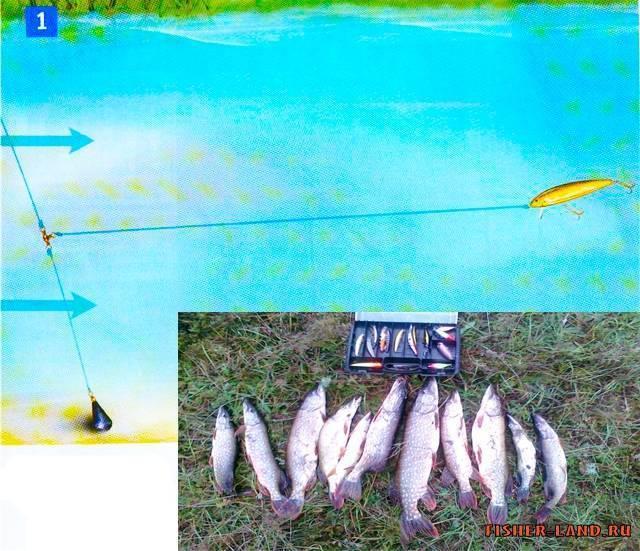 Ловля судака весной: эффективная рыбалка на спиннинг с берега