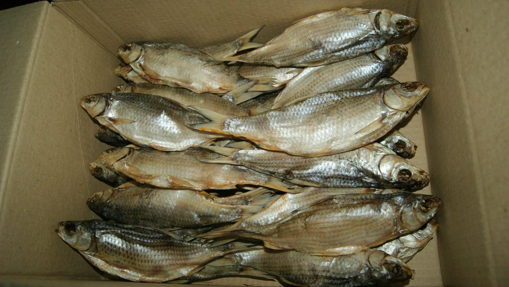Где и как правильно хранить сушеную рыбу в домашних условиях