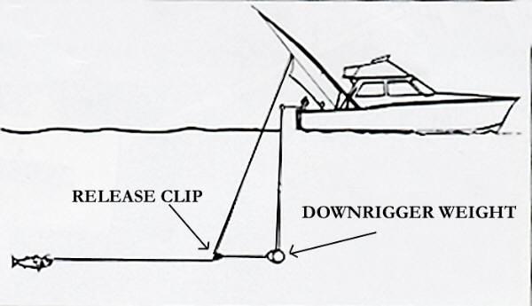 Даунриггер: 105 фото и видео, плюсы, минусы и описание ловли на даунриггер