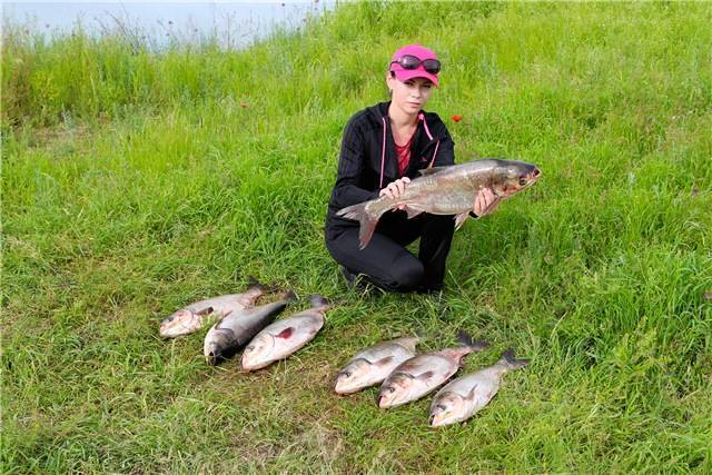 Места для рыбалки в алматинской области – суперулов – интернет-портал о рыбалке