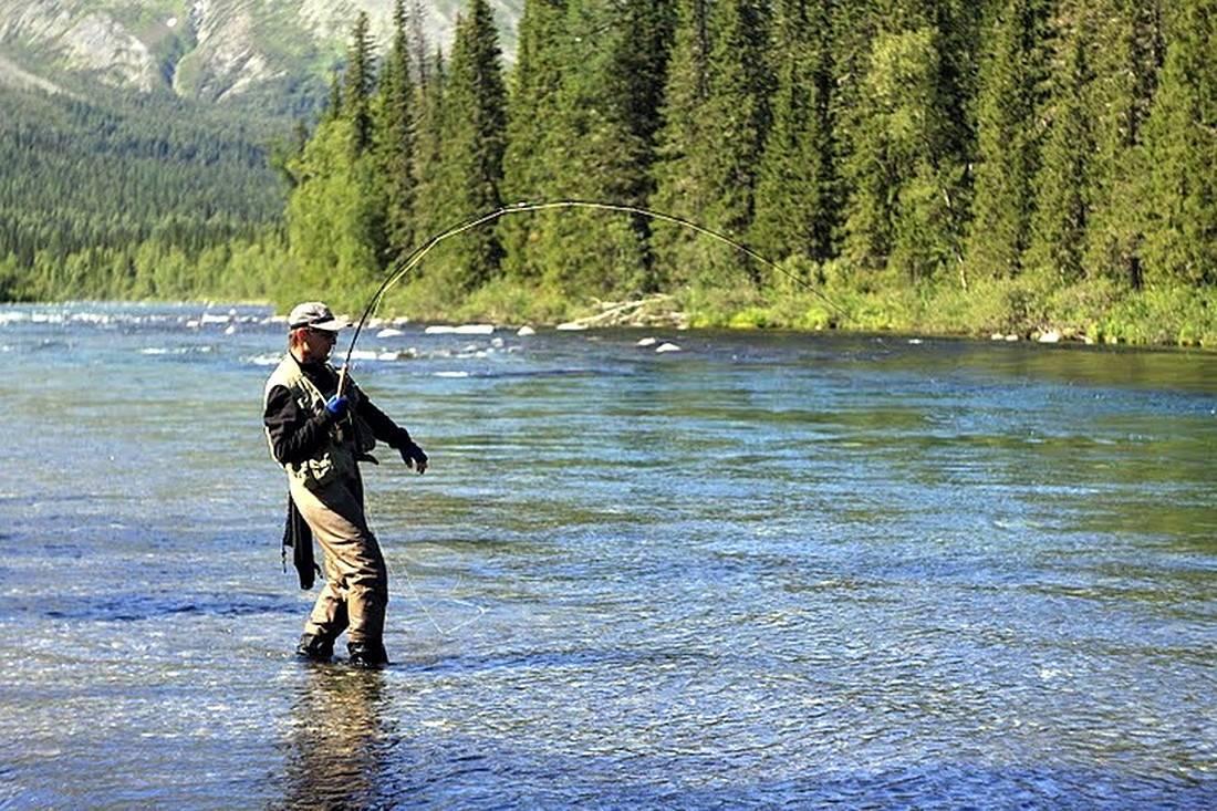 Где порыбачить в новосибирске и новосибирской области в 2019 году