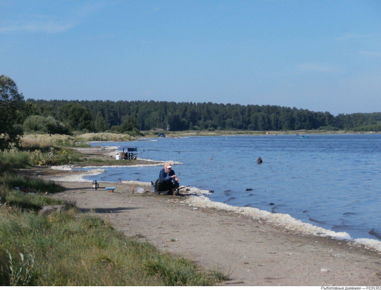 Рыбалка в свердловской области: где рыбачить и что можно поймать?