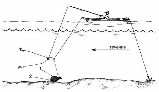Как ловить леща на донку: виды снастей и их монтажа с кормушкой и другими оснастками