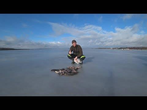 Рыболовные базы на рыбинском водохранилище: обзор, проживание