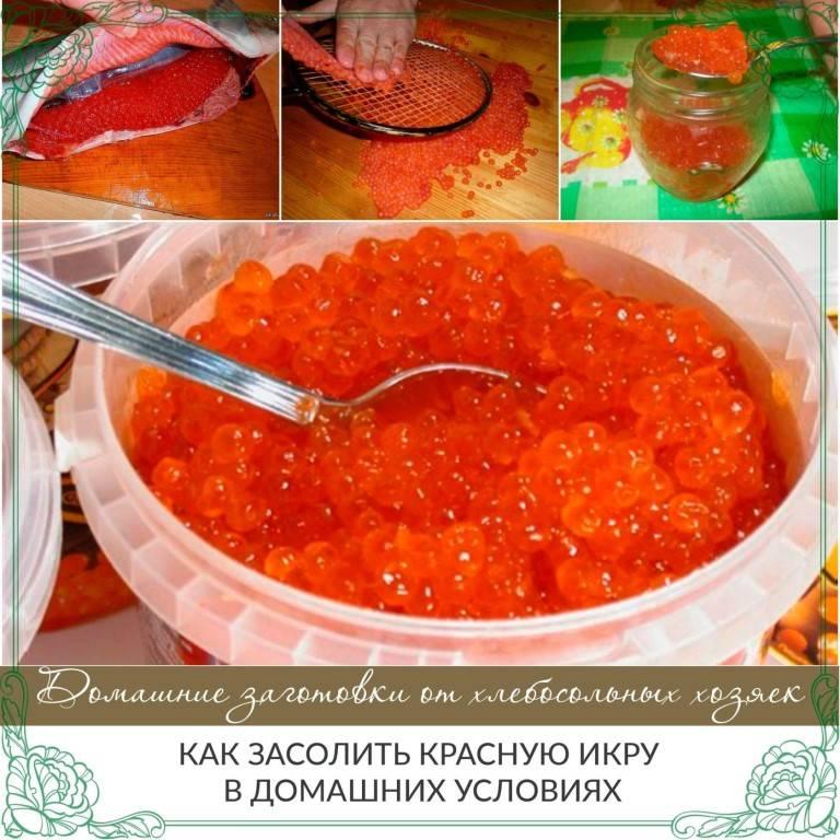 Как засолить икру форели в домашних условиях быстро и вкусно – 6 рецептов с фото пошагово