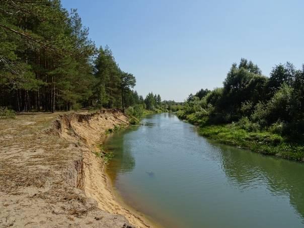 Река уча в московской области, пушкино: рыбалка, на карте, фото